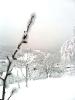 Зима. Казбековский район