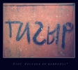 Тигыр ))