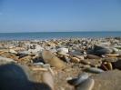 Каспийское море (Махачкала)